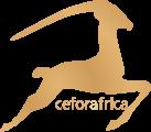 Ceforafrica - Afroshop & Haarverlängerung in Köln